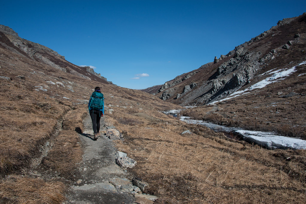 woman hiking a trail in Denali National Park