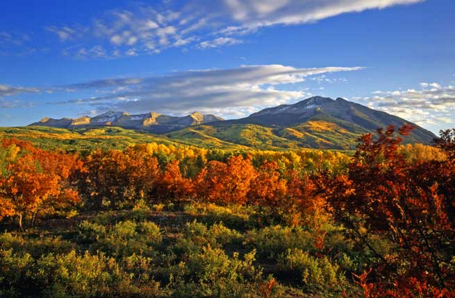Aspen Colorado landscape photo in full colour during the fall. Image has mountains and a blue sky in the background.