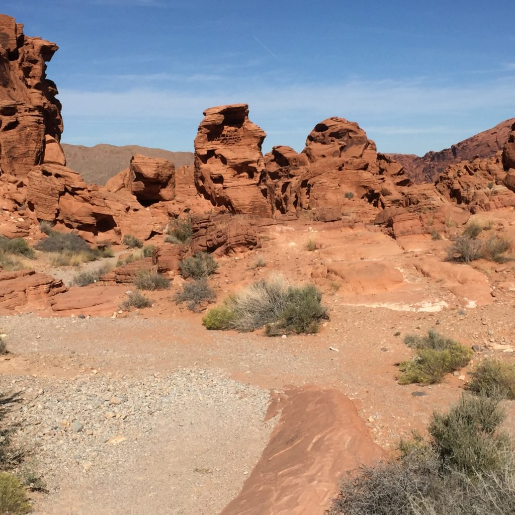Desert in the Valley of Fire