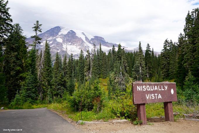 Mountain Rainier National Park