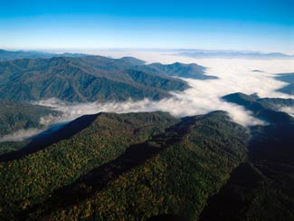 North Carolina - Great Smoky Mountains. Image is of tree covered mountains with clouds in the background, full colour.