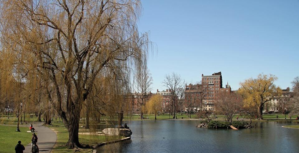 Boston Commons Public Garden